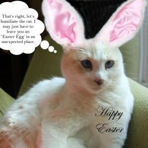 Sophie bunny