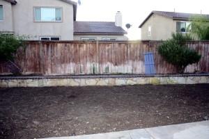 garden 268